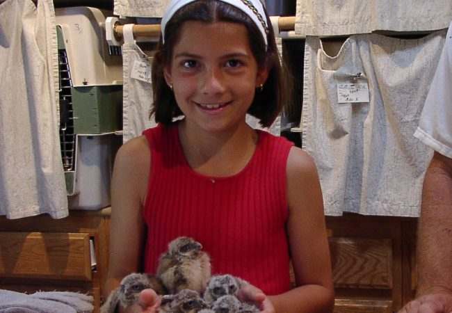Areanna Sabine, CEO of Birdzoff, holds a group of owls as a child.