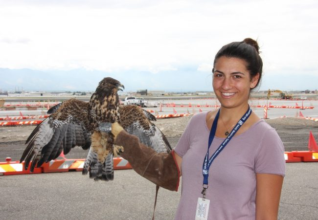 Areanna Sabine, CEO of Birdzoff, holds a hawk.