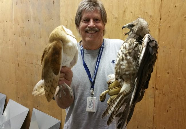 Gordy, Birdzoff's chief designer, holds a hawk and an owl.